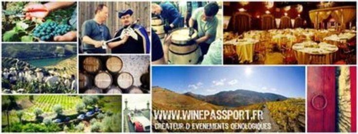 Wine Passport meta-og-twitter-dans la catégorie Agences événementielles: Organisation événements, décoration, accueil et sécurité, animation