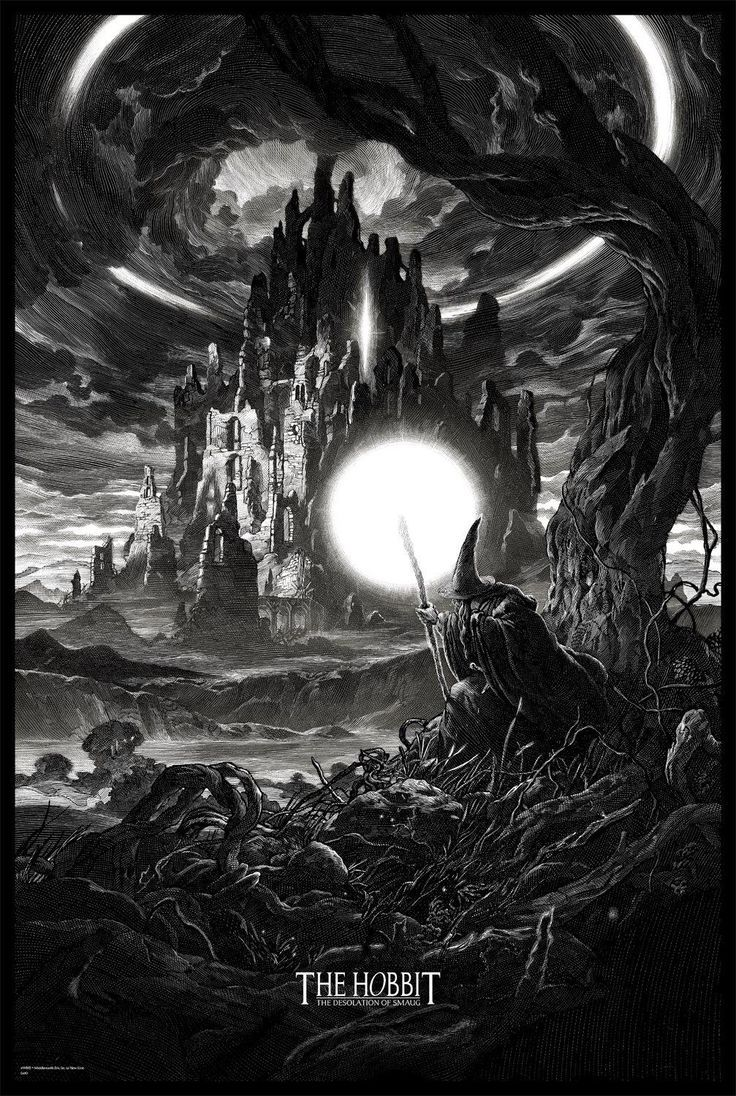 The Hobbit: The Desolation of Smaug by Nicolas Delort