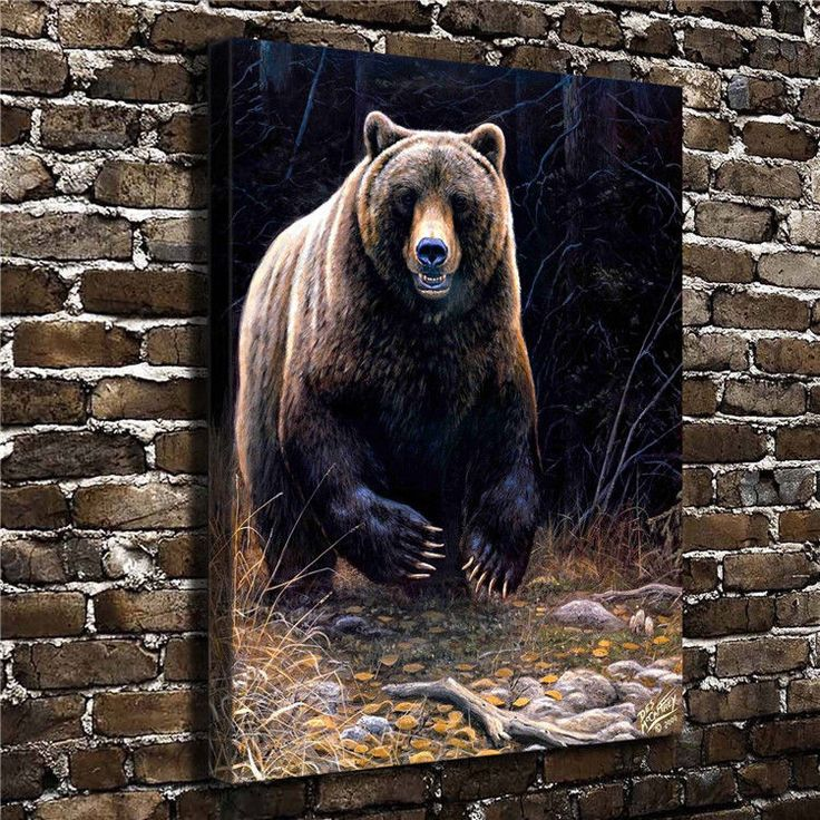 Canvas Hd Picture Print Art Painting Unframed, Brown Bear 18''X24''