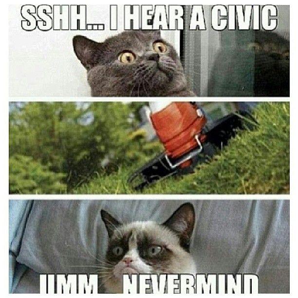 Car meme, car humor, car funny, angry car, Honda