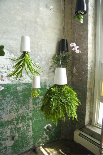 Un vaso al contrario per chi ha la casa sottosopra. Disegnato da Patrick Morris questo contenitore permette di far crescere le piante a testa in giù. La domanda che mi faccio è come faccio ad annaffiarle? :) £35£