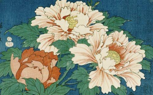 Représentation de la pivoine dans l'estampe japonaise = uchiyo-e (traduction en japonais)