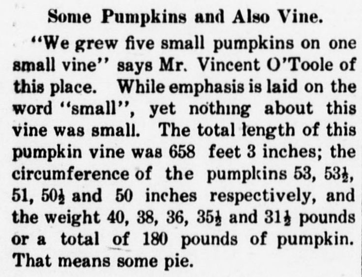 a farmer grows some oversize pumpkins in this article from the thurmont catoctin clarion october - Article About Halloween