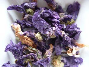 TISANE - Il y a peu, j'ai proposé la fabrication d'une boisson à base de fleurs d'hibiscus … Pour continuer dans le domaine des fleurs, je vous propose d'utiliser la mauve, la lavande et le jasmin dans de nouvelles préparations, bonnes à déguster et réputées bonnes...