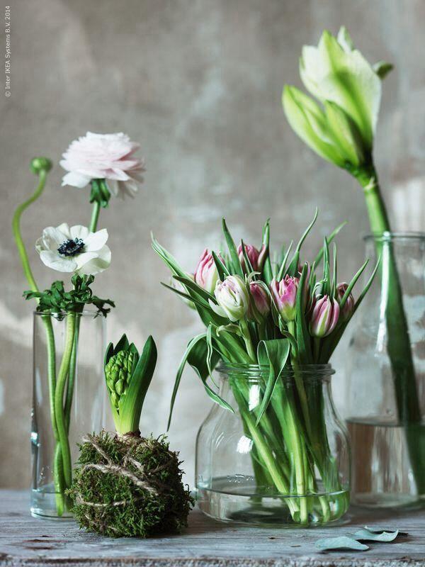 Lente compositie van verschillende bloemen in glazen vaasjes