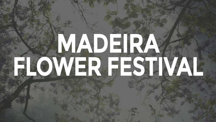 Madeira Flower Festival by Visit Portugal | The Visit Portugal team attended the Madeira Flower Festival 2017 and shared on social media all the highlights of this beautiful event. If you couldn't make it this year, here's a glimpse of what happened in Funchal. See you next year?