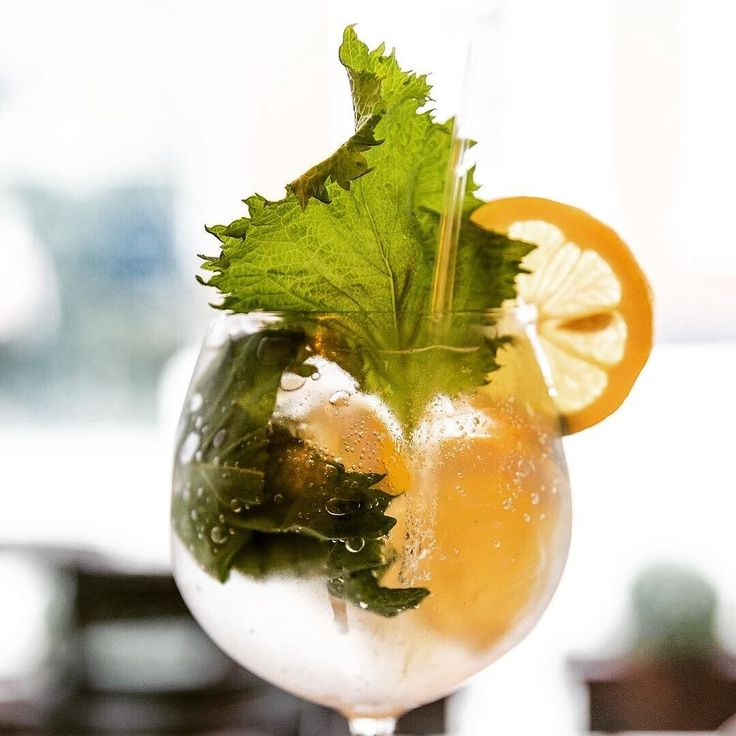 Perfect #ginandtonic weather today. Dive into a copa de balon of our Kinobi Gin & @fevertree_uk tonic with white grapefruit yuzu cherry green shiso for a cooling copa! #gin #gnt #gintonic #awardwinning #restaurant #bar #manchester #manchesteruk #tapas #mcr #drinkmcr #kingstreet #citycentre #perfectserve #drinkstagram