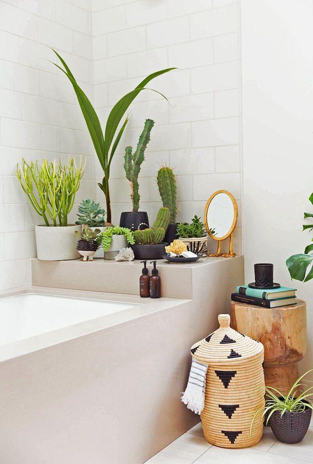 Végétaliser la salle de bains