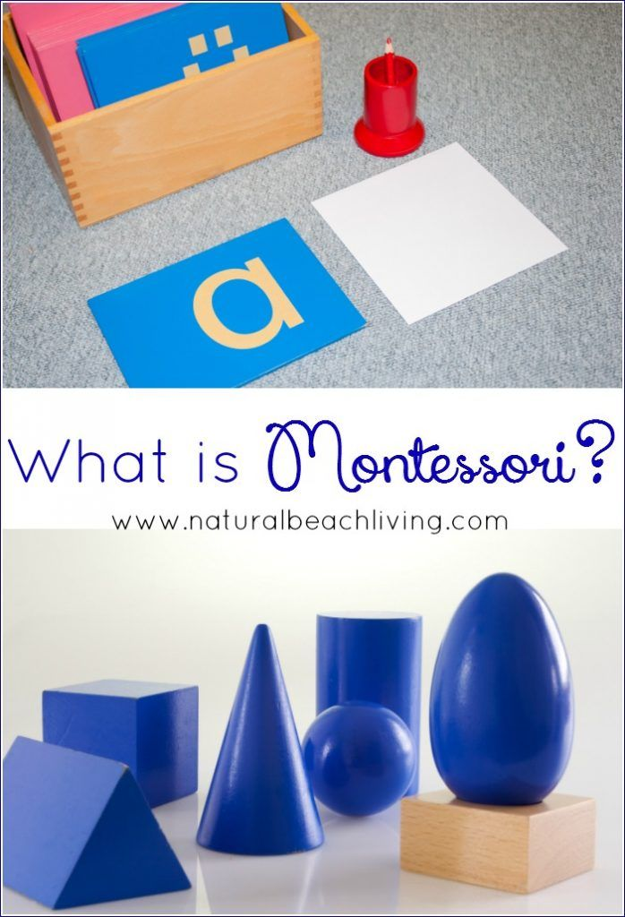 Have You Ever Wondered What Montessori Is Interested In Learning About Maria And The