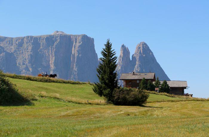 Seiser Alm nahe Schlern, Südtirol / South Tyrol, Alpe di Suisi