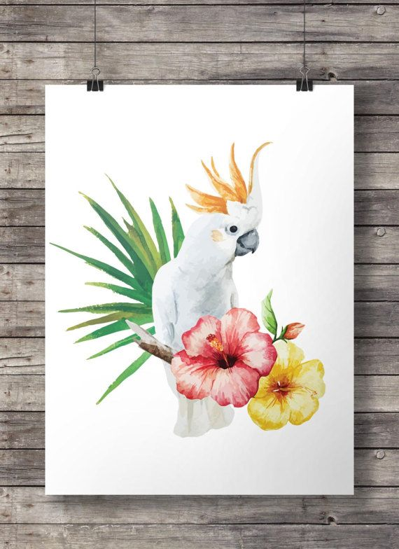 Cockatoo tropical decor parrot australian bird white hibiscus watercolor palm leaves australian flora fauna printable wall painting