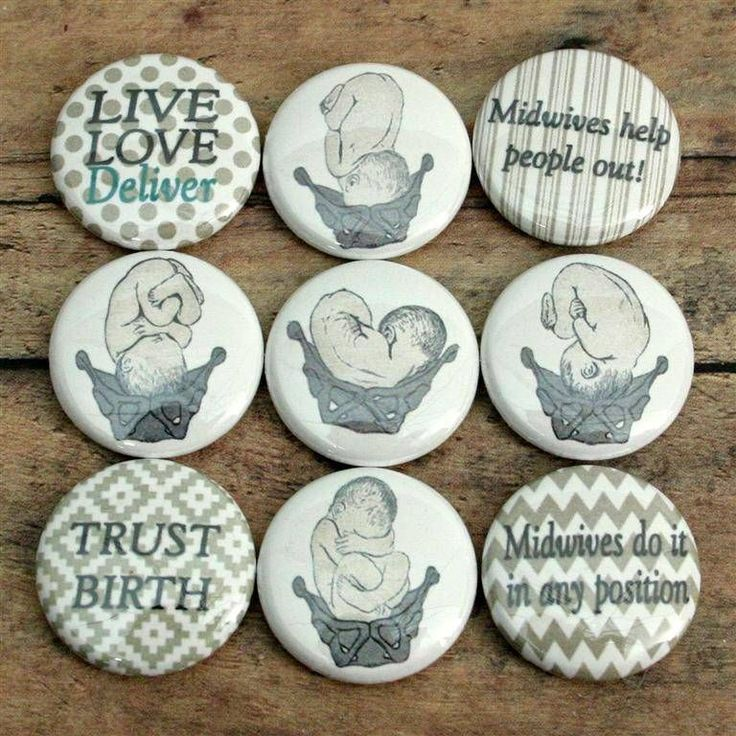 Vtg Anatomic Baby Pelvis Midwife Doula Gift Fridge Magnets Buttons Scrapbook Pin