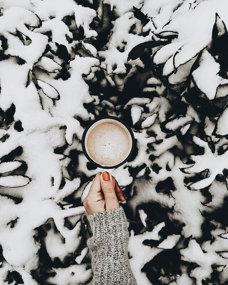 ? pinterest // @katherinequeen5 (holiday foods photography)