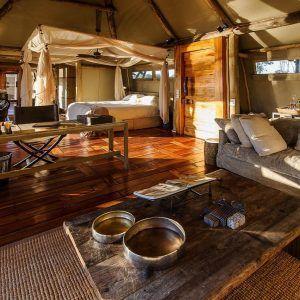 Best 25+ Safari bedroom ideas on Pinterest | Safari room ...