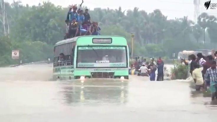 Chennai Floods: superb bus driver
