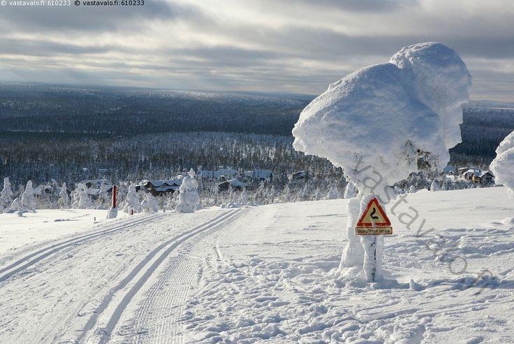 Vaarallinen lasku - lumi maisema hiihto latu puu liikenne merkki vaara vaarallinen lasku talvi tykkylumi mäki jyrkkä