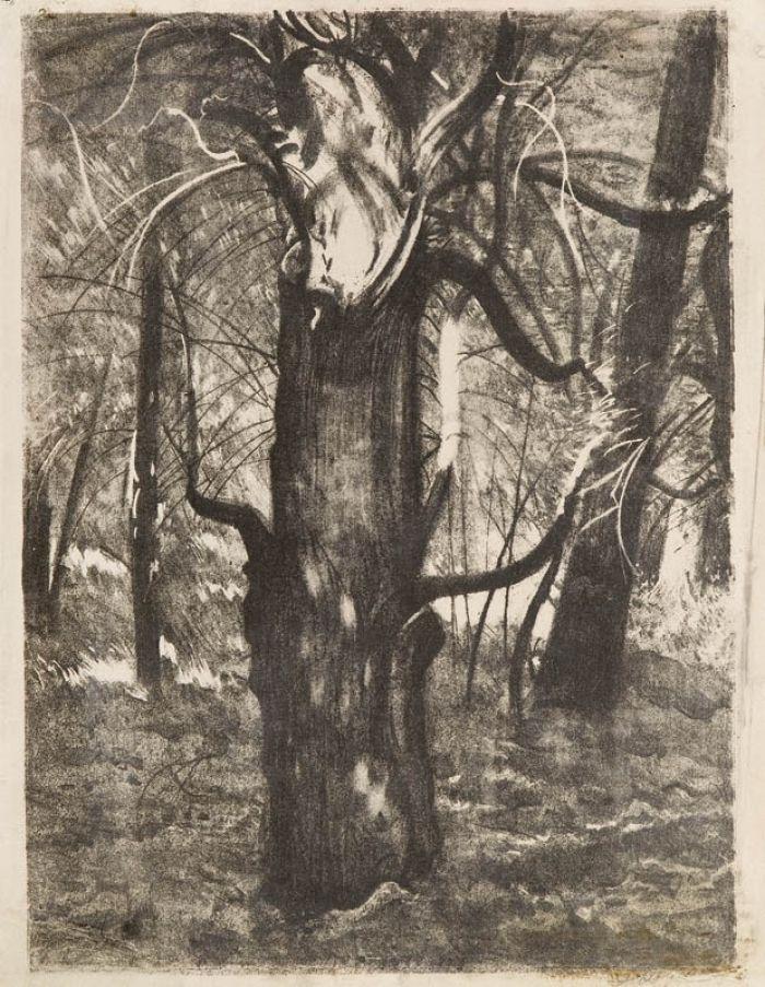 Leon Wyczółkowski - Drzewo