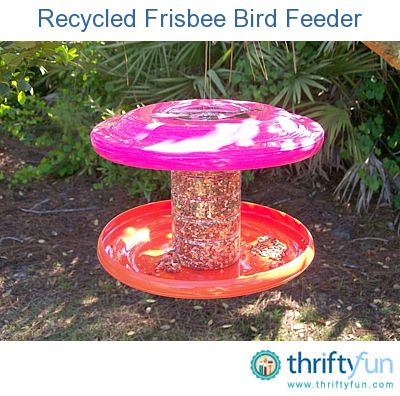 Bird Feeders From Recycled Materials For Kids - WoodWorking