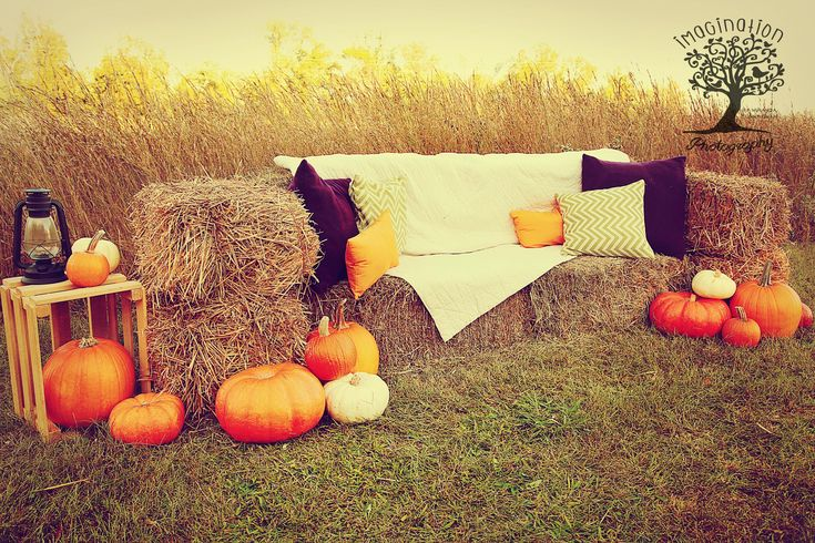 2014 Fall mini session set Hay bale couch, field, pumpkins, pillows www.imaginationphotog.com
