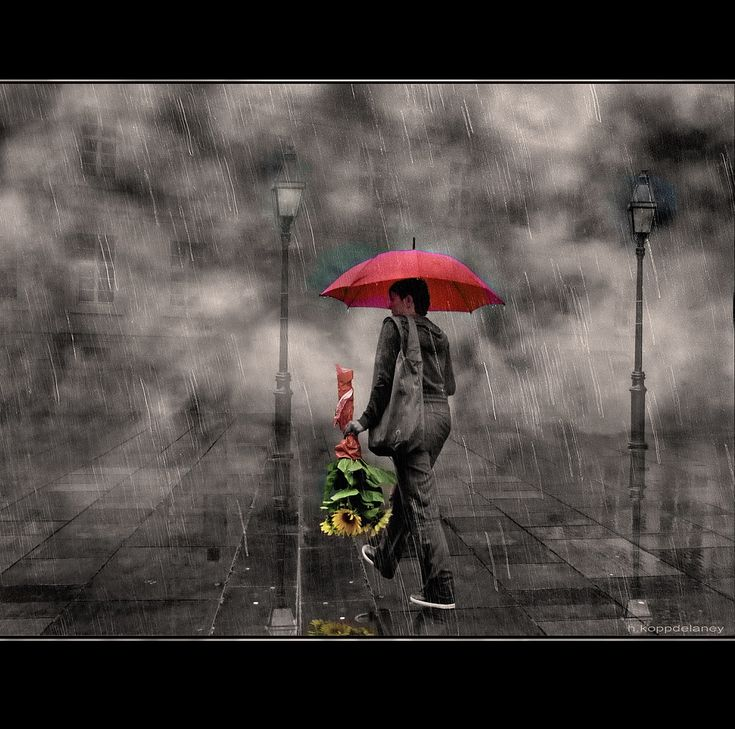 """https://flic.kr/p/a8ce8A   Sunflower Rain   Summer Rain  HKD  Verdammt nasses Wetter heute… Oder: Unterdrückte Wut   Sie entschuldigte sich dafür, dass es von ihrem geschlossenen Regenschirm auf meine Schuhe getropft hatte. Dann legte sie sie die geschnittenen Sonnenblumen auf den Nebenplatz. Als sie bemerkte, dass ein paar Tropfen in die Polster sickerten, legte sie den Strauß auf den Boden des Zugabteils und schob ihre Handtasche auf die nassen Stellen. """"Für meine Schwiegermutter"""", sagte…"""