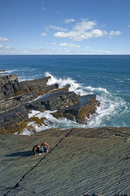 Fossil Bed at Mistaken Point Ecological Reserve, Newfoundland
