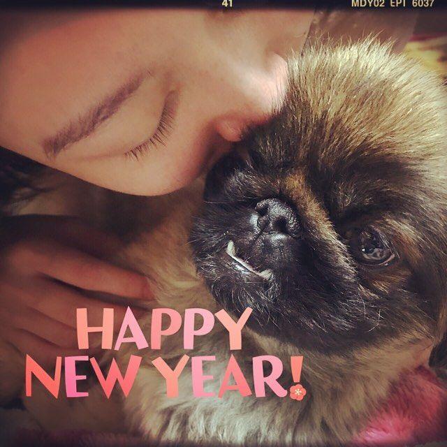 ピノの年(*´˘`*)♡ 帰省した娘と2ショット、迷惑そうなピノちゃん( ´艸`) #ペキニーズ #鼻ぺちゃ #ブサ可愛 #愛犬 #ピノちゃん #いぬ #犬 #絶壁 #癒し #pekinese #dog #dogstagram_Japan