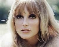 Sharon Tate - - Yahoo Image Search Results