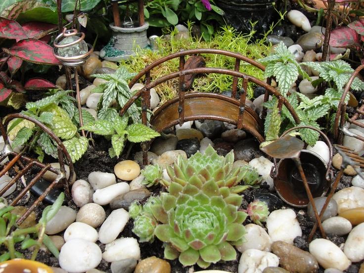 More Of Fairy Garden Pot Garden Spaces And Pots