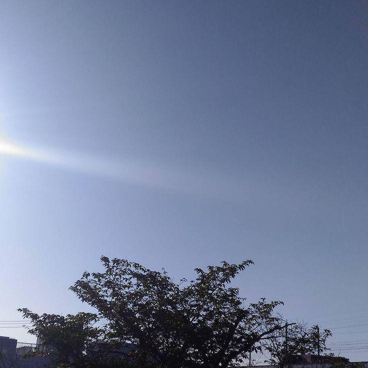 おはようございます快晴の金曜日暑くなりそう #sky #cloud #空 #雲 #イマソラ #goodmorning #おはよう