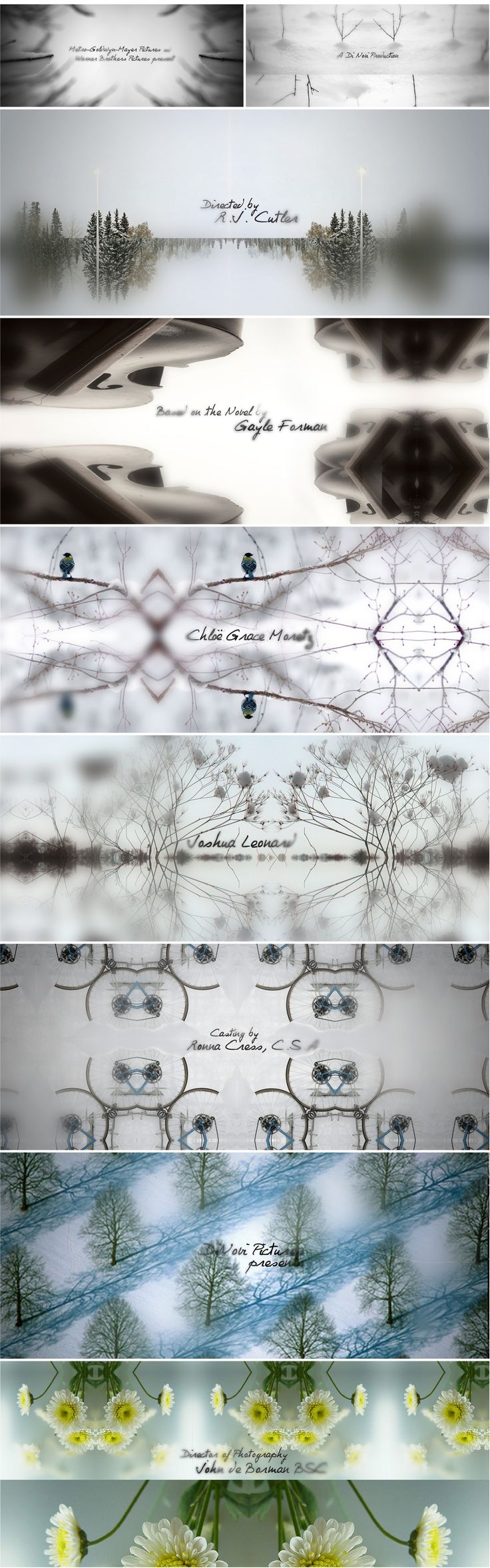 Title sequence design - motion design   If I stay - Hyejung Bae