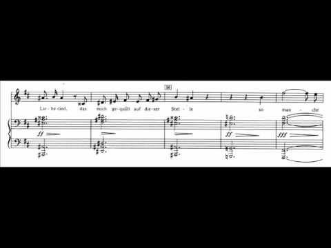 Franz Schubert Der Doppelgänger - YouTube