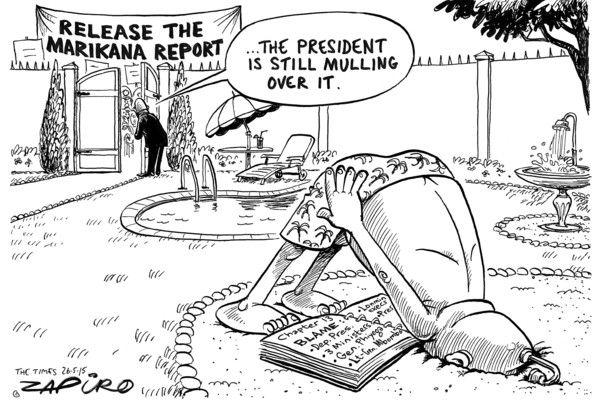 @myanc_ #ZumaMindApplication #NeverMind