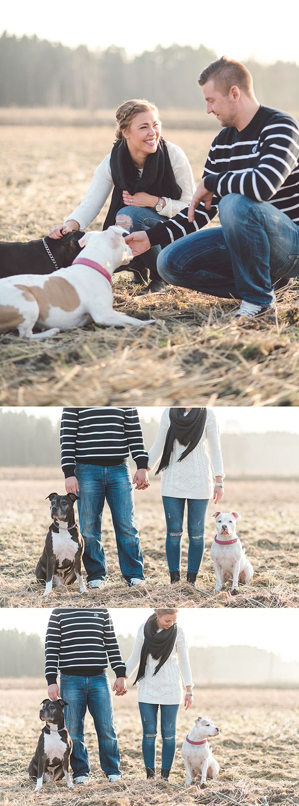 Fall couple shoot with dogs — Susanna Nordvall Photography