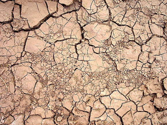 Cracked Earth Texture #texture #inspiration #officetrends
