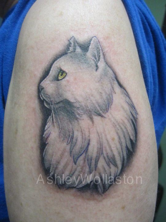 17 best images about awesome tattoos on pinterest for White cat tattoo floresta