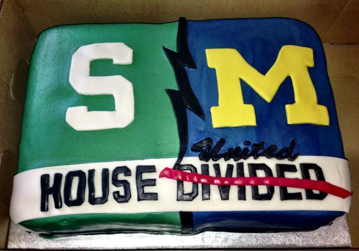 Michigan Michigan State House Divided Groom's Cake — Groom's Cakes