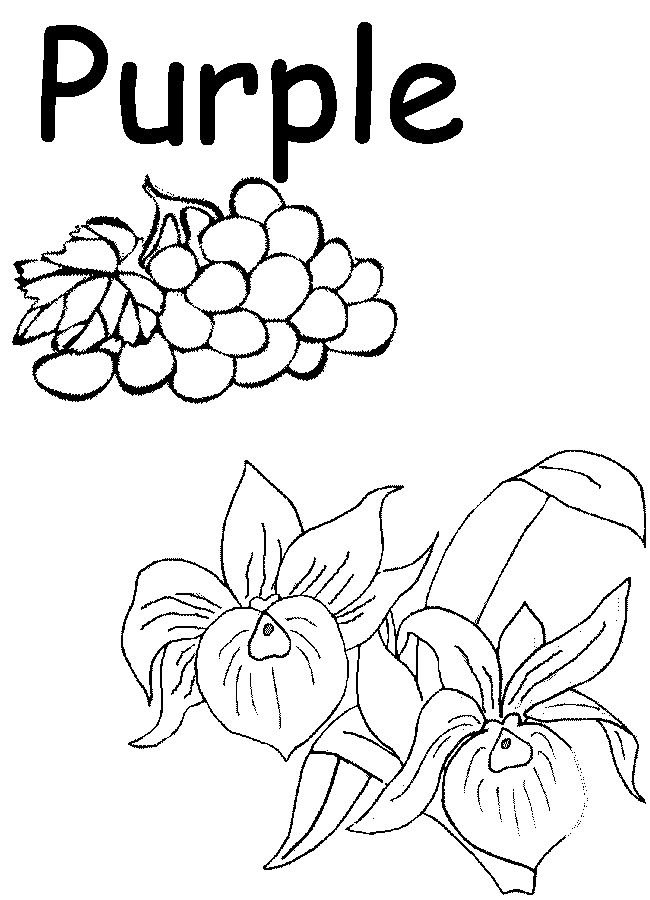3603bbac33dc8e18b5169064936fe3f6--preschool-worksheets-preschool-printables