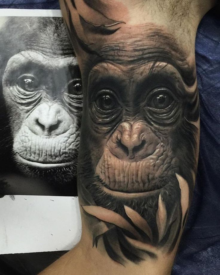 Great realism by @fred_tattoo