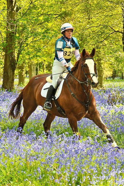 Hambleden Horse Trials