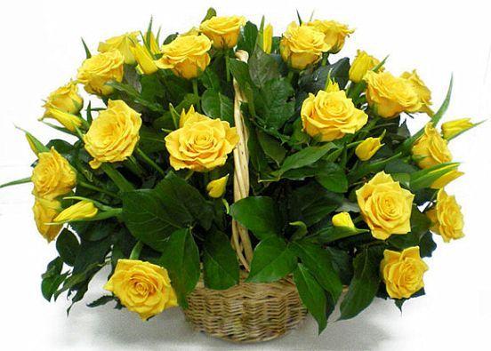 Букет в корзине 51 роза. Композиция Корзина из желтых роз и желтых тюльпанов 50 см. (Эквадор)