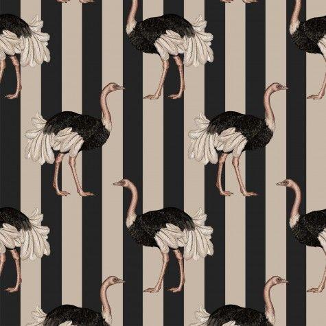 PRIDE Wallpaper Blush / Off Black