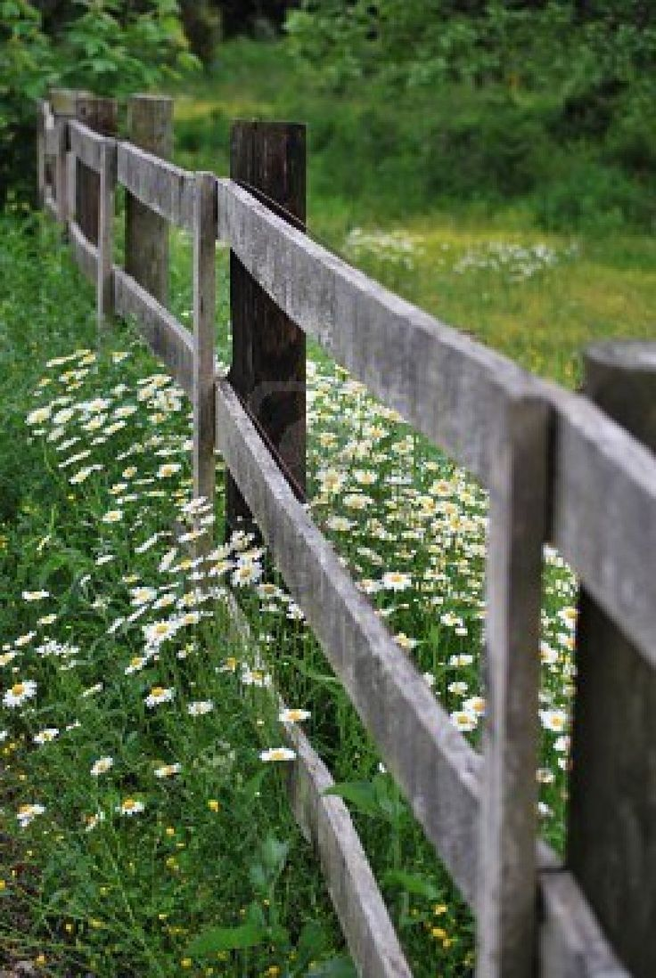 246 best homesteading fences gates images on pinterest gates the kind of fence i want just at the top of our driveway rustic and baanklon Gallery