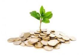 El Capital Semilla es un financiamiento inicial (fondos que no deben ser devueltos), para la creación de una microempresa o para permitir el despegue y/o consolidación de una actividad empresarial existente. Una vez que el proyecto ya está instalado y funcionando, se puede recurrir a otras líneas de financiamiento para hacer crecer el negocio, como por ejemplo, a través del Capital de Riesgo.