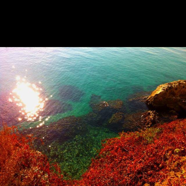 Otranto my love