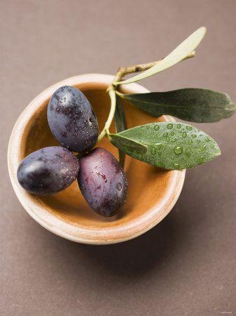 Olive Sprig with Black Olives in Terracotta Bowl