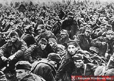 Kampania Wrześniowa 1939.pl Galeria - wojsko polskie ::