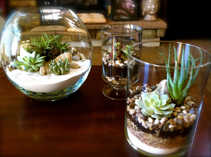 I did it~! These are my completed terrariums. I will be posting a How-To soon I hope because there is very little online about how frustrating it can be unless you use some uncommon tools. :o]
