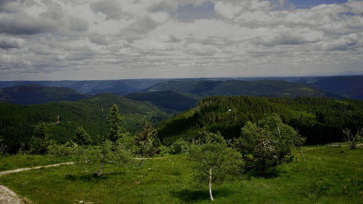 Blick von der Hornisgrinde (Nordschwarzwald) nach Osten.