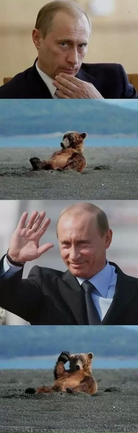 Putin salute the worthy… Can't stop laughing!
