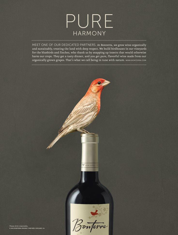 Bonterra Wines Rebranding and Advertising by Formium (http://formium.com/#work/bonterra_wines)
